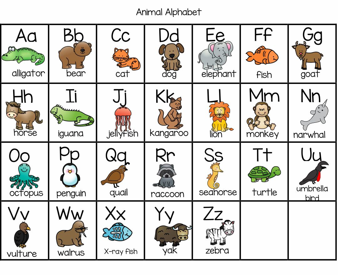 Animal Alphabet Flash Cards Printable