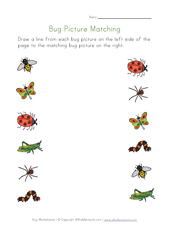 Free Printable Matching Worksheets carolinabeachsurfreport – Kindergarten Matching Worksheets