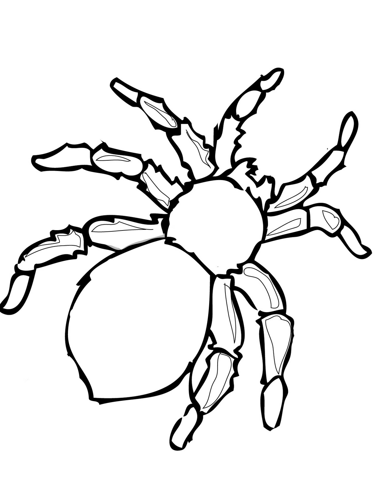 5 Images of Free Printable Spider Template