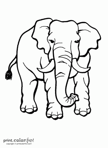 4 Images of Free Printable Elephant Crafts