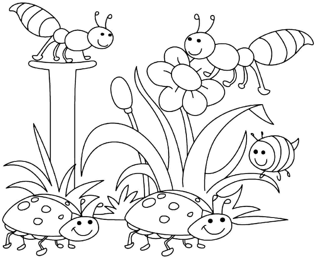 Free Printable Spring Coloring Pages Kids