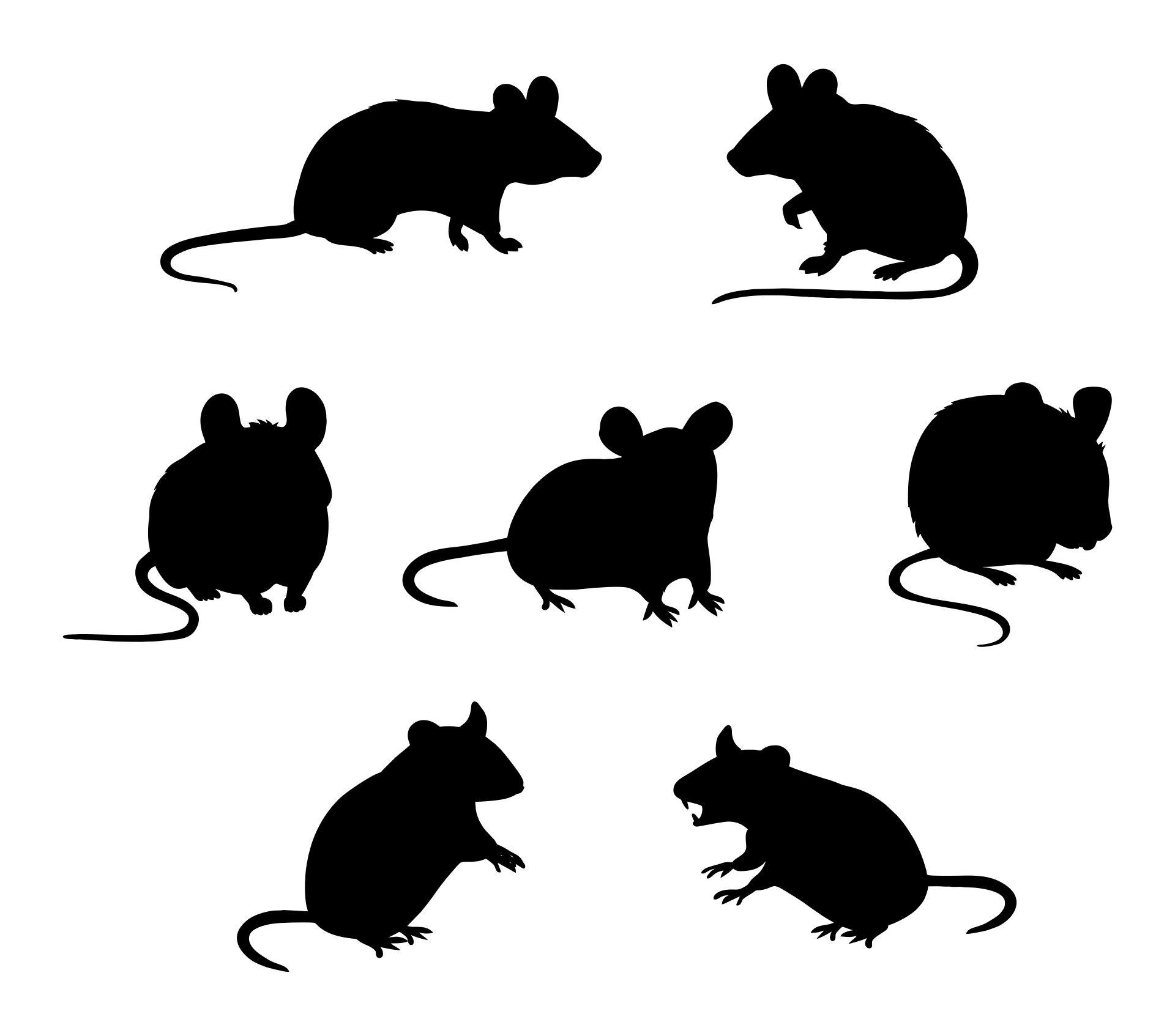 Silhouette Halloween Mice Template
