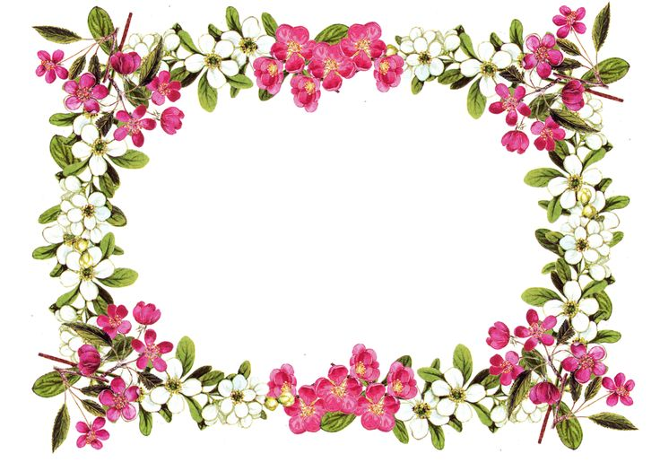 Vintage Flower Borders and Frames