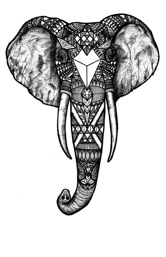 Black and White Elephant Tattoos