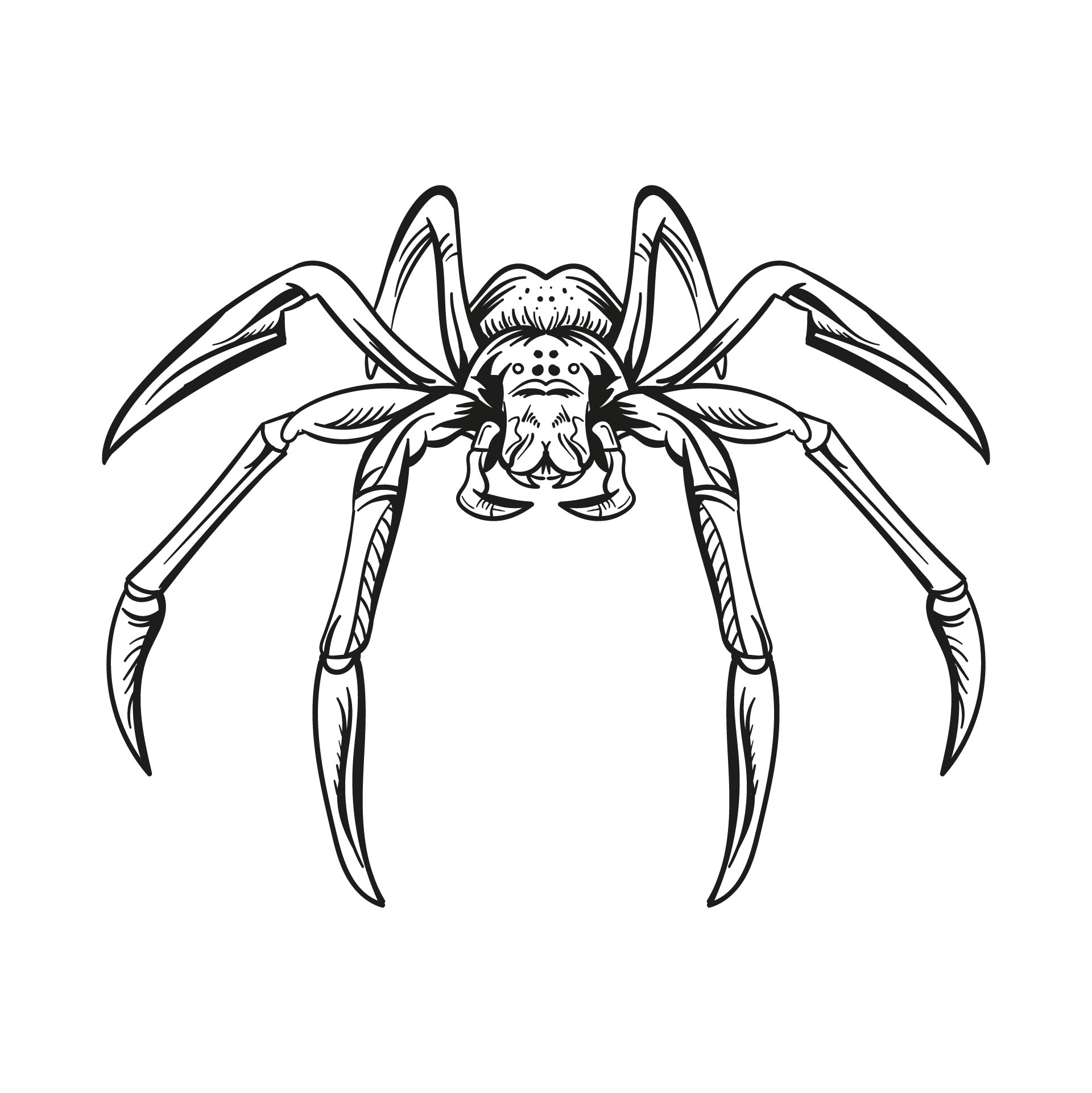 7 Best Images Of Spiders For Halloween Printable
