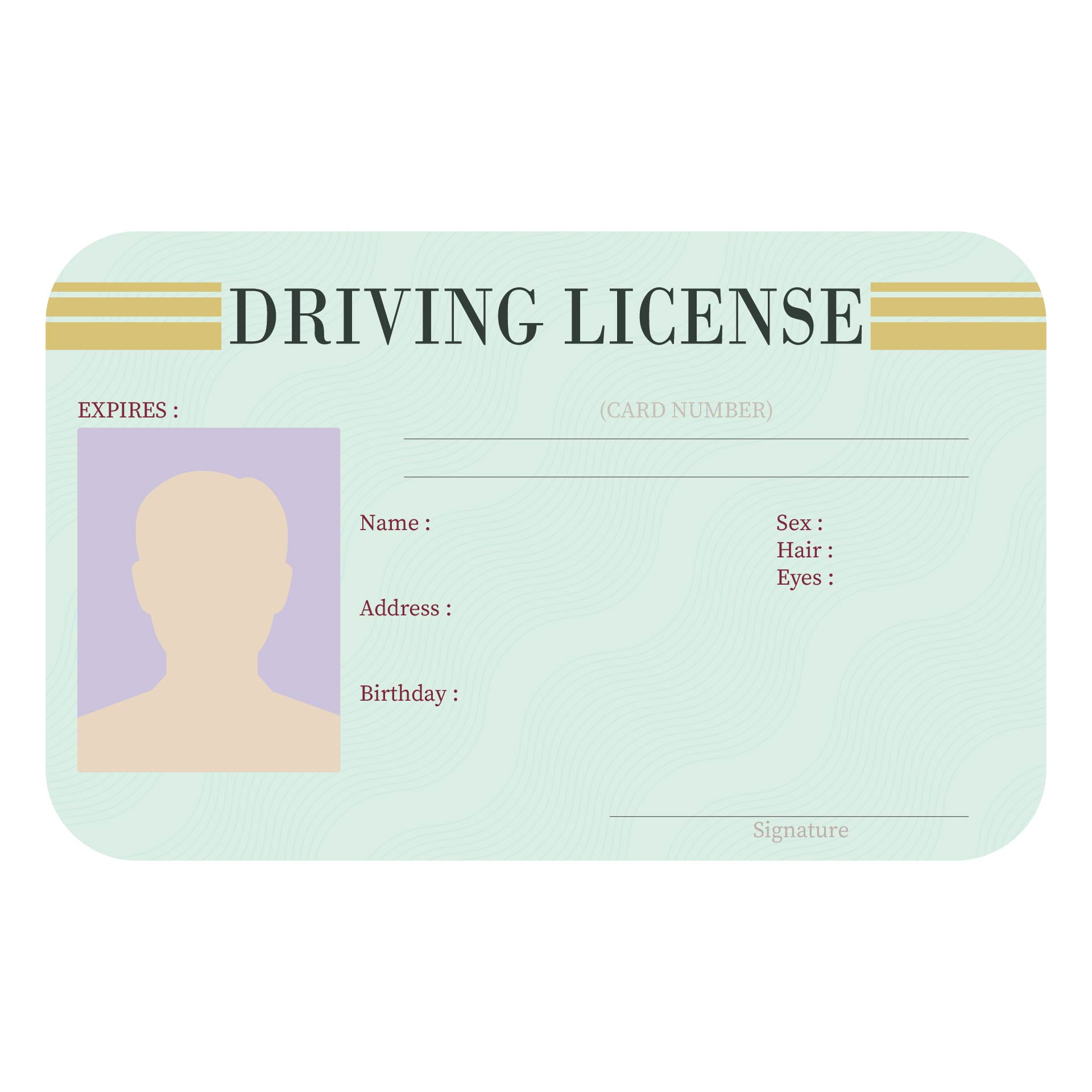 Blank Drivers License Template