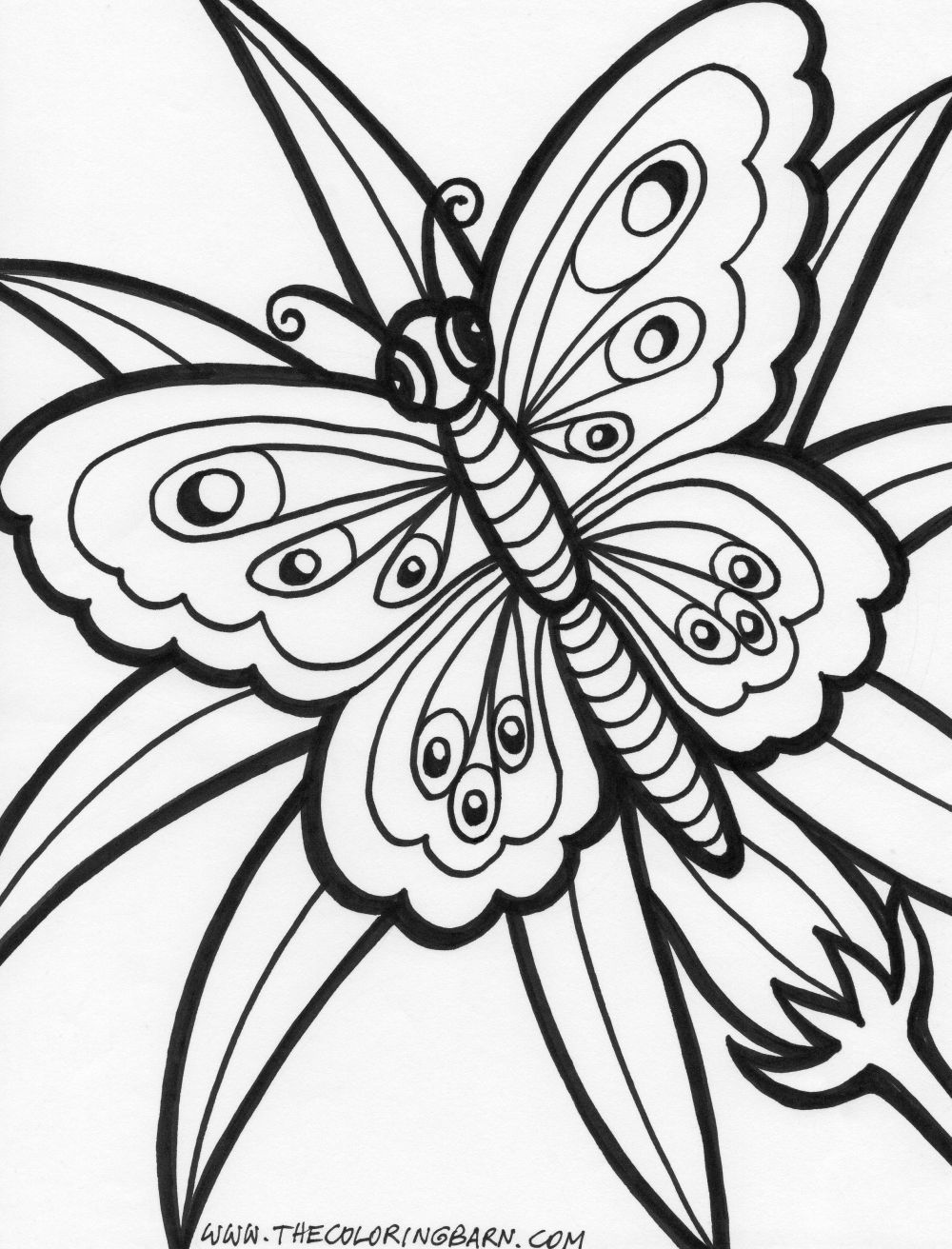 Silly Butterfly Coloring Page   Bug coloring pages, Butterfly ...   1312x1000