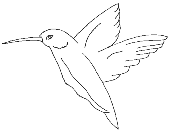 Flying Bird Coloring