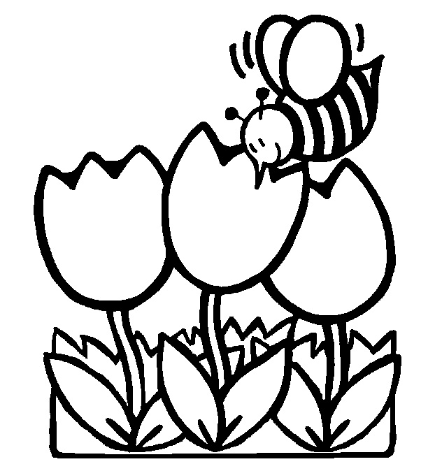 4 Images of Disney Spring Coloring Pages Free Printable