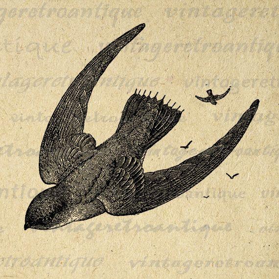 Vintage Flying Bird Clip Art