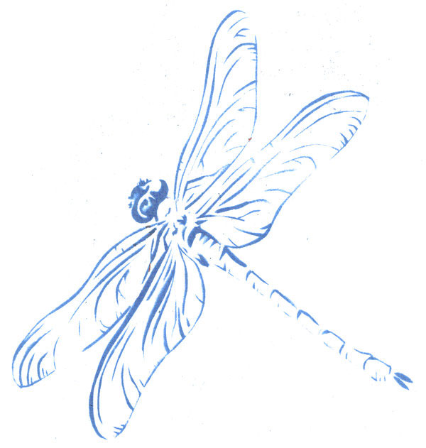 Free Dragonfly Drawings