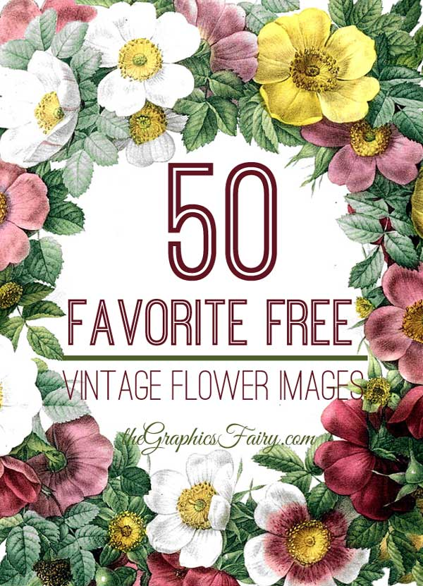 9 Images of Free Printables Botanical Vintage Floral