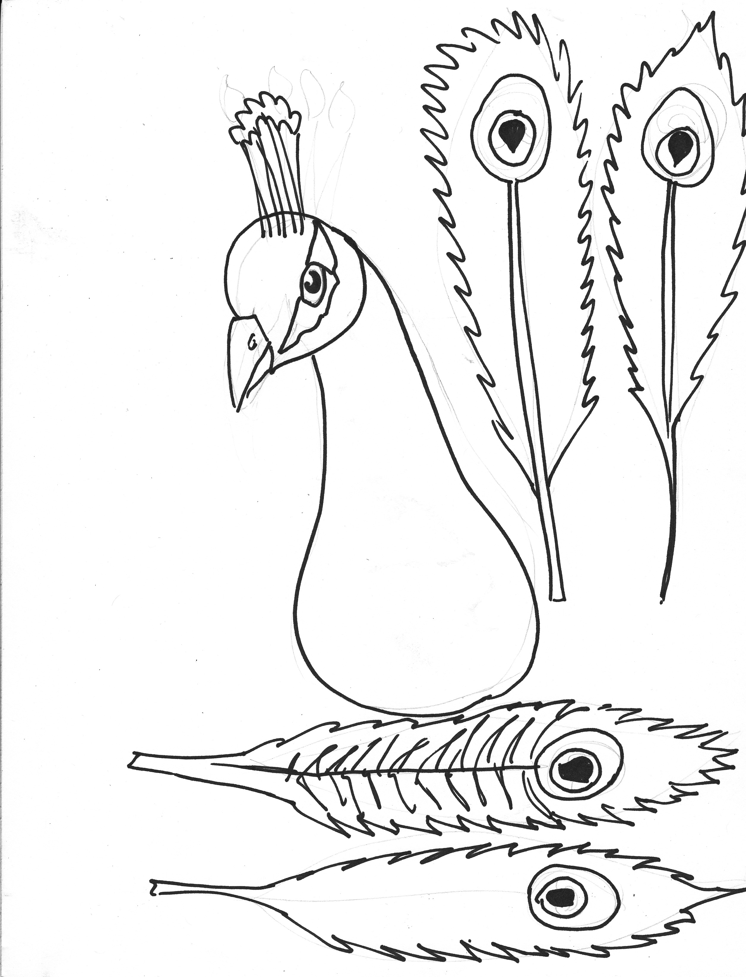 7 Images of Peacock Feather Template Printable