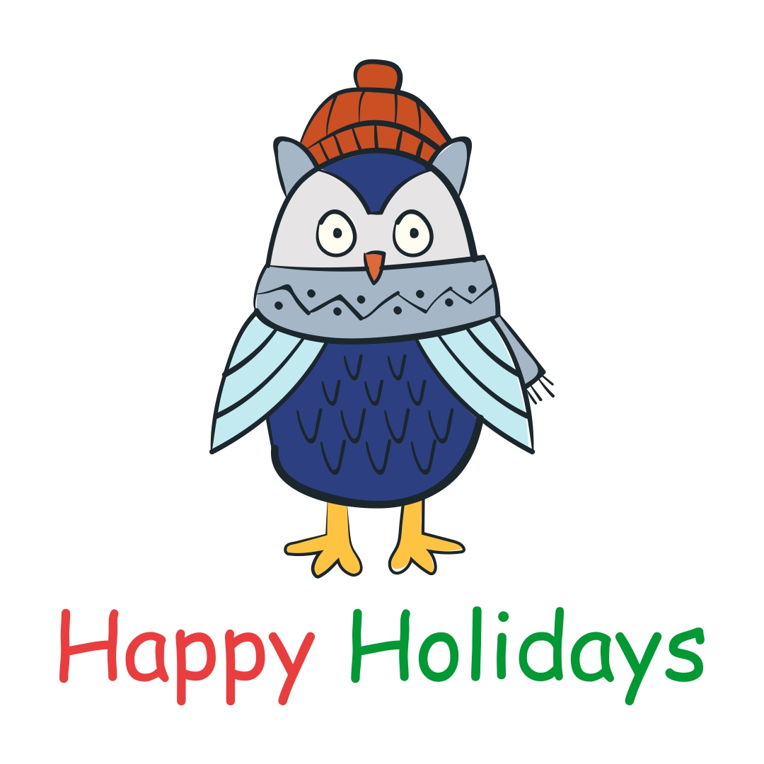 Personalized Owl Christmas Cards