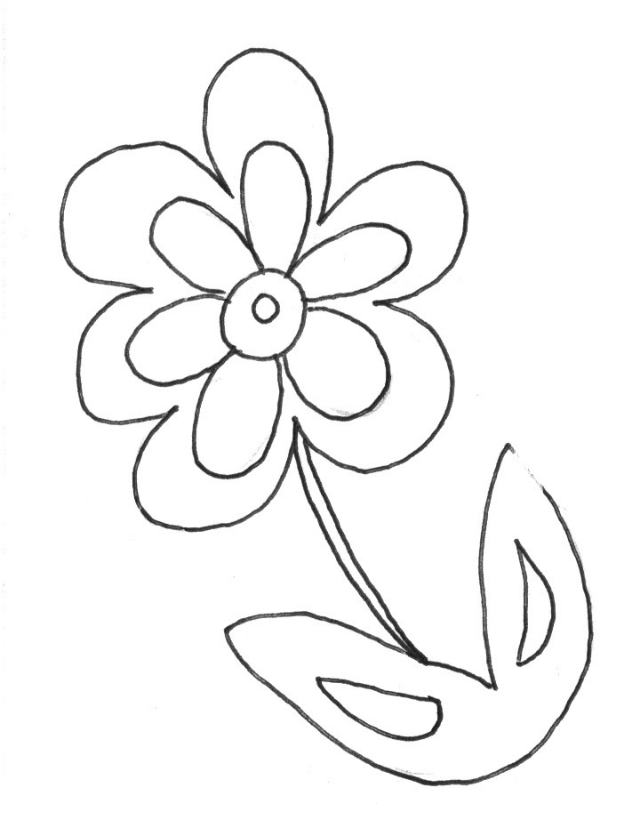 4 Images of Spring Flower Printable Coloring Pages