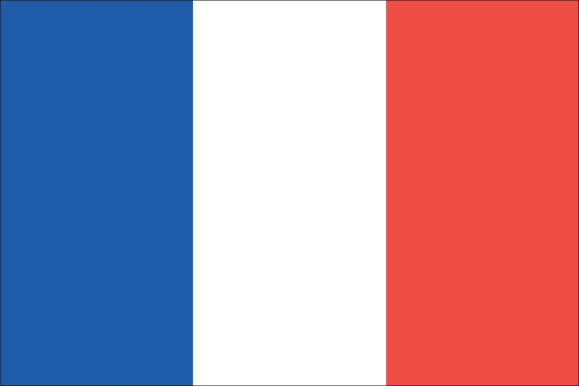 It is an image of Sly Printable French Flag