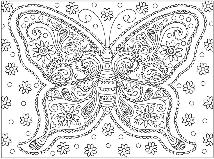 7 best images of butterflies coloring book printable pages for Coloring pages of butterflies for adults