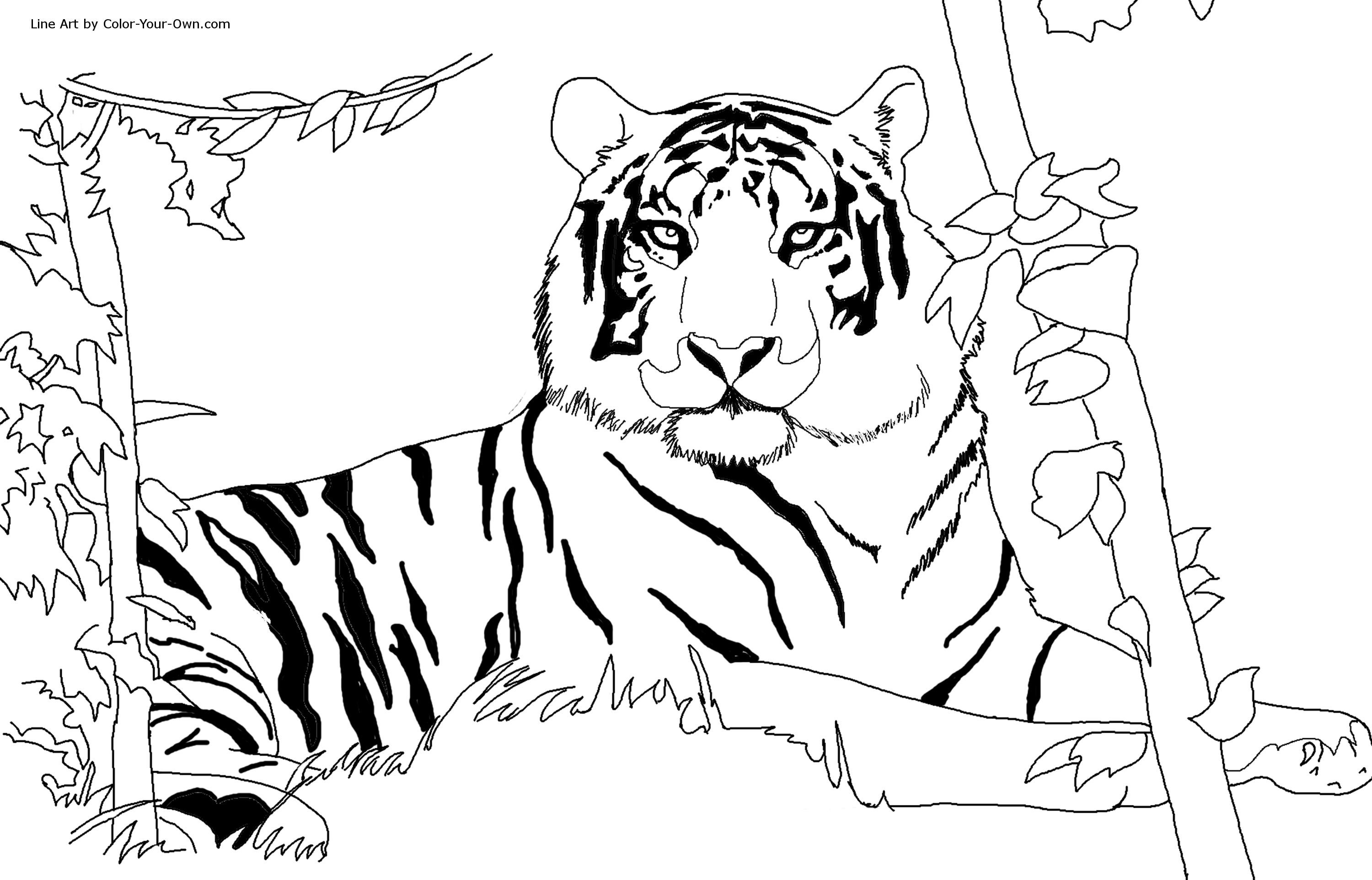8 Images of Printable Tiger Coloring Pages