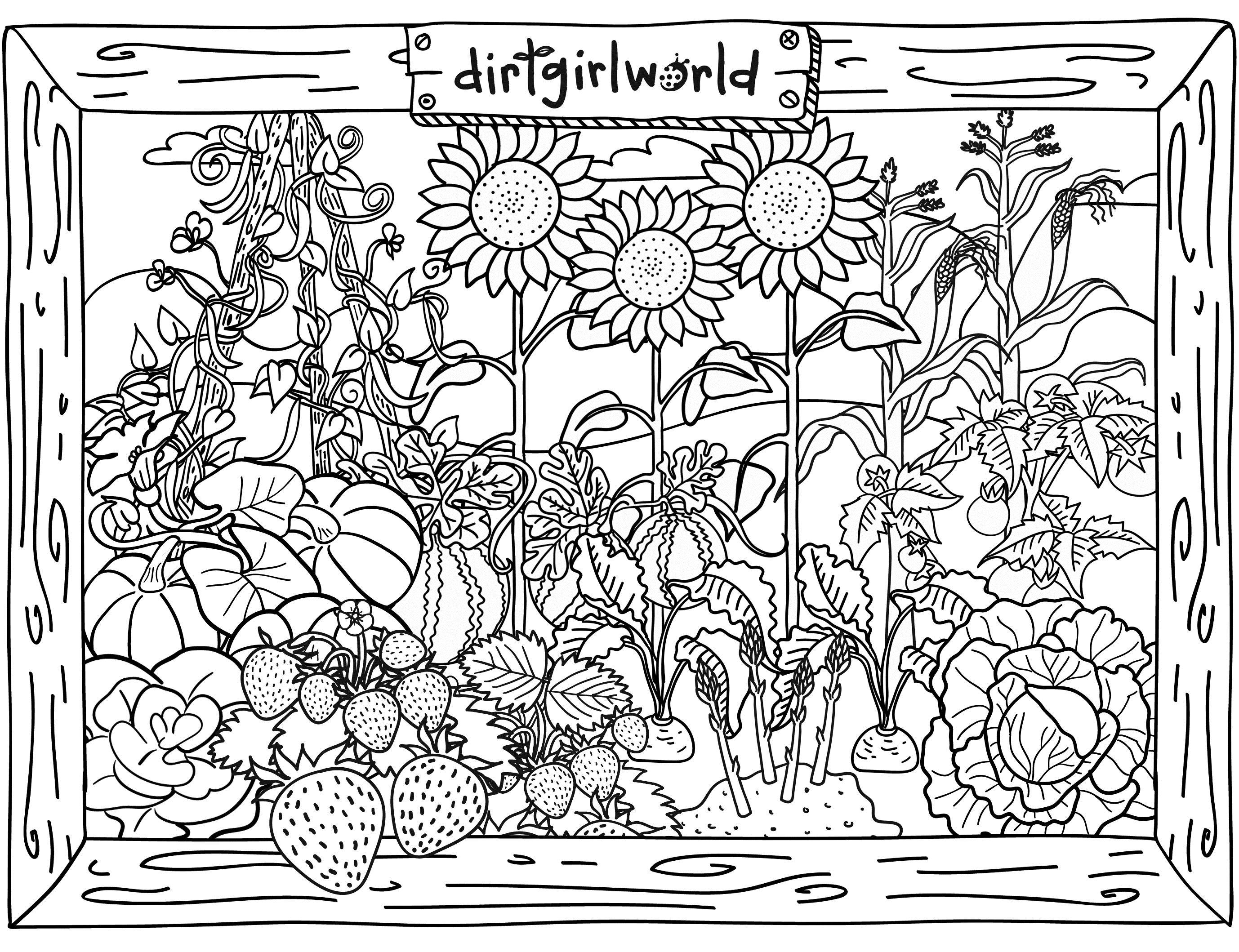 find printable adult coloring pages - 6 best images of adult printable activity sheets