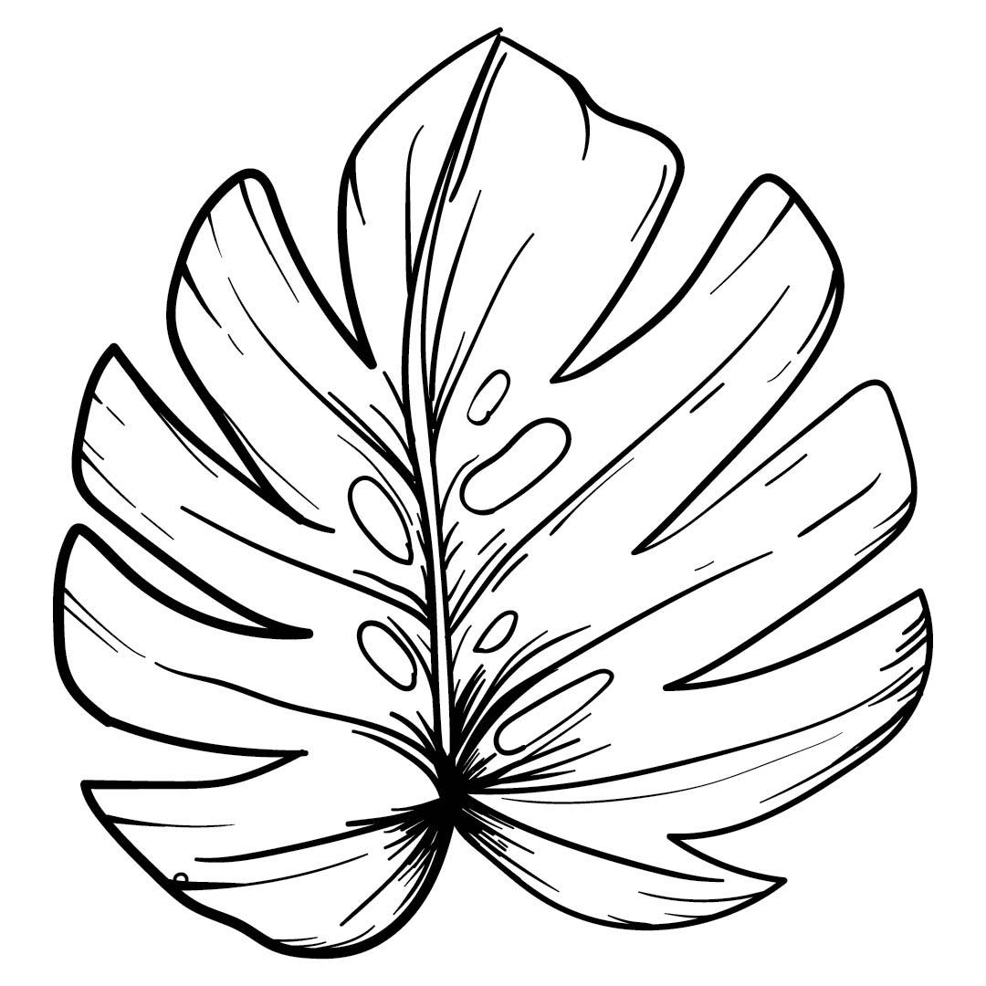 6 Best Images of Leaf Tracers Printable - Maple Leaf ...