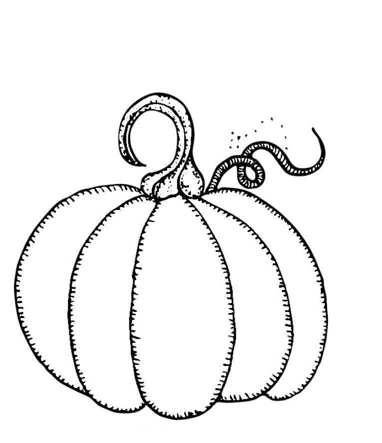7 Images of Free Pumpkin Printable Pages
