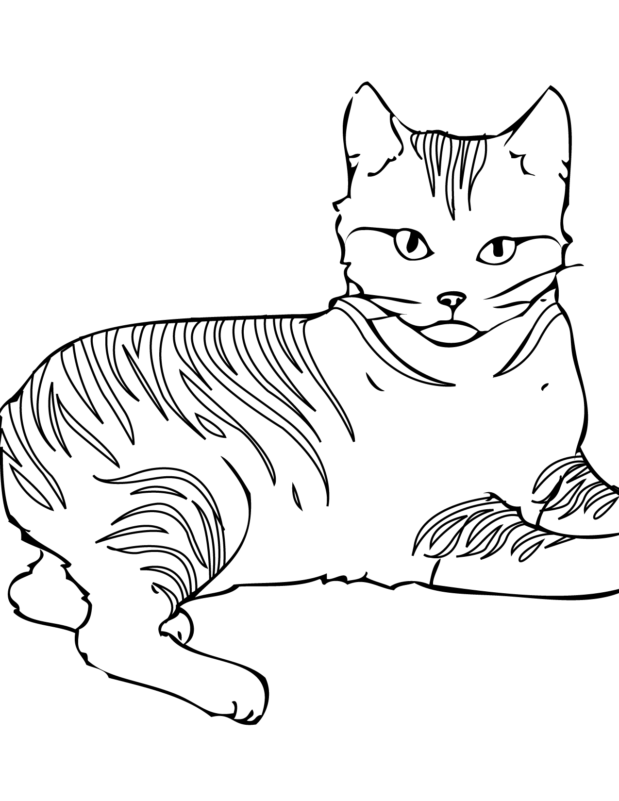 8 Images of Warrior Cats Coloring Pages Printable