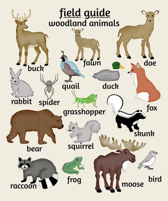 6 Images of Free Printables Woodland Animals Nursery Wall Art
