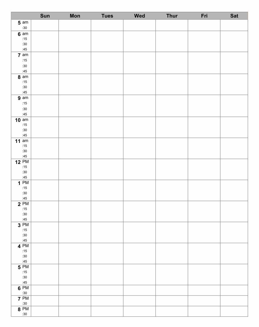 Hourly Daily Planner Template
