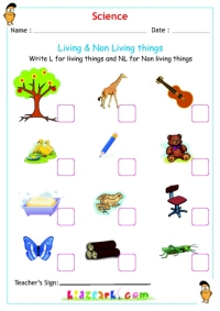 7 best images of free printables living things living and non living things activities living. Black Bedroom Furniture Sets. Home Design Ideas