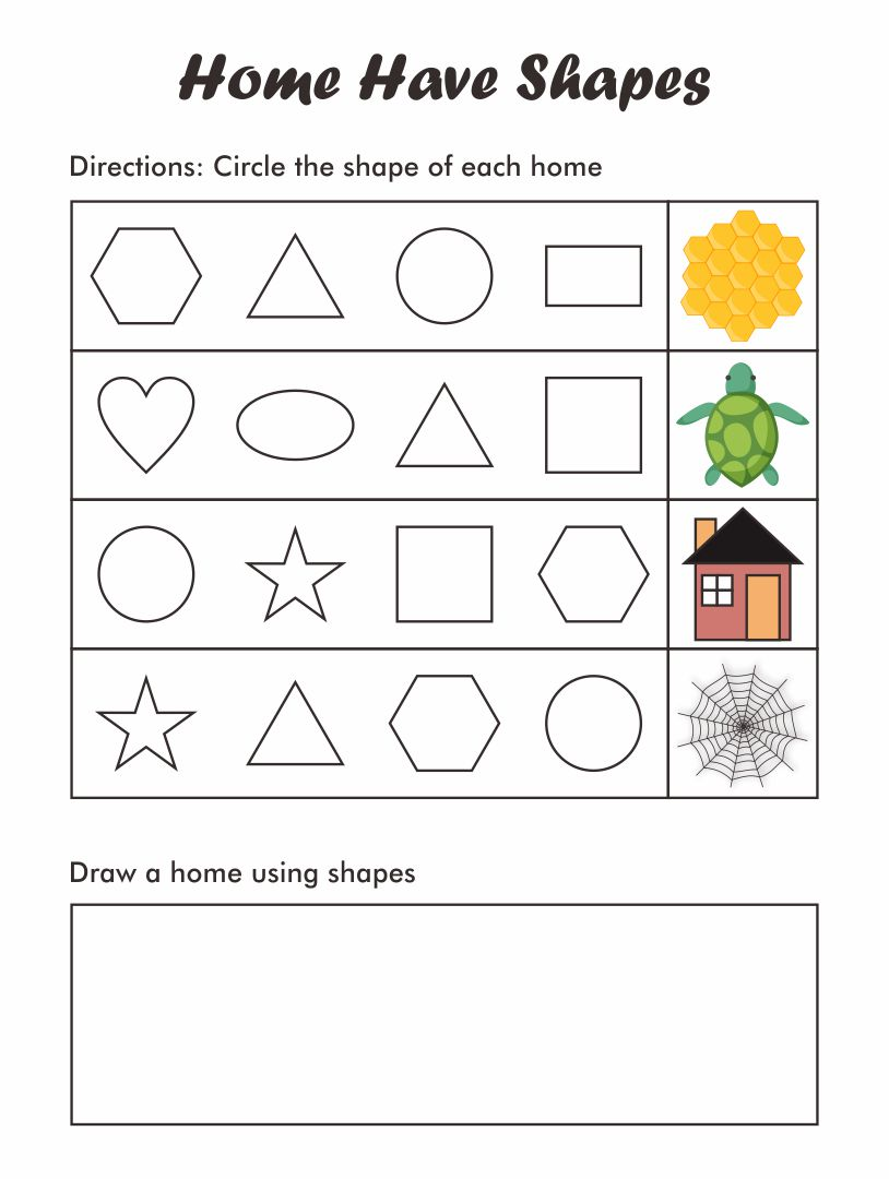 Shapes in the Environment Worksheet