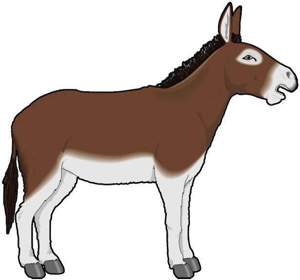 4 best images of printable picture of a donkey donkey for Donkey face mask template
