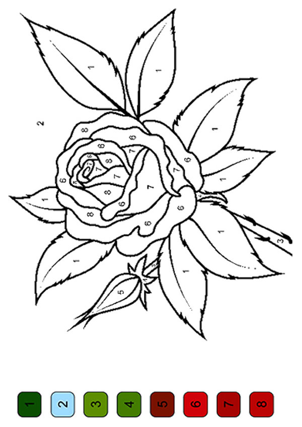 color by number flower coloring pages 7 best images of flower color by number printables
