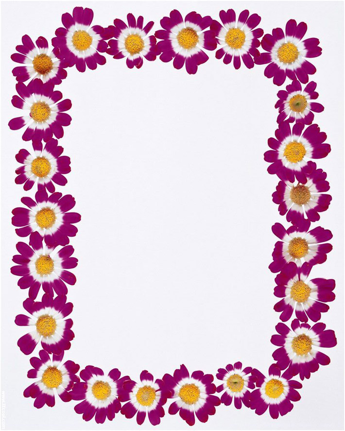 6 Images of Spring Border Paper Printable