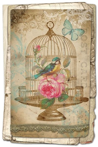 8 Images of Free Printable Vintage Birds Graphics