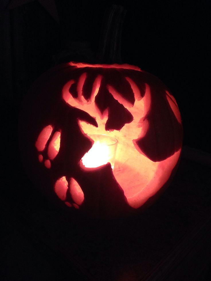 6 best images of printable deer pumpkin carving patterns Pumpkin carving designs photos