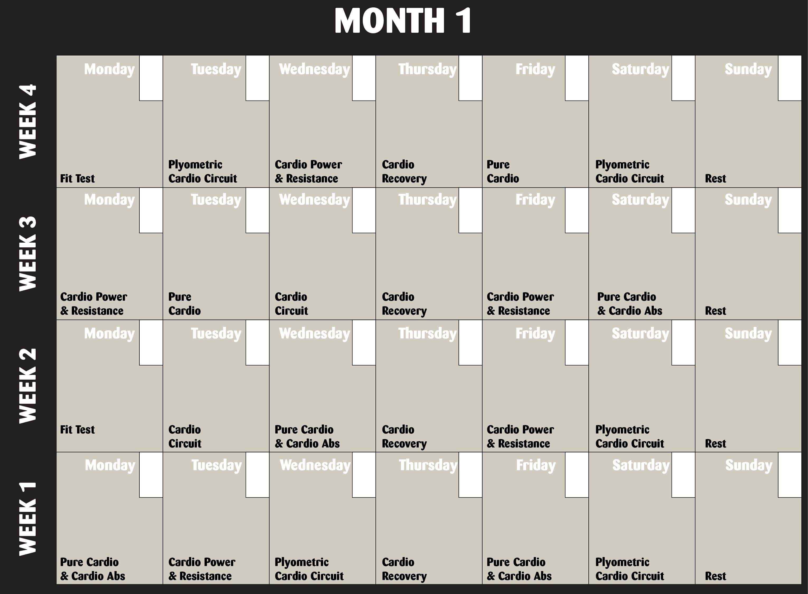 Insanity Workout Schedule.pdf