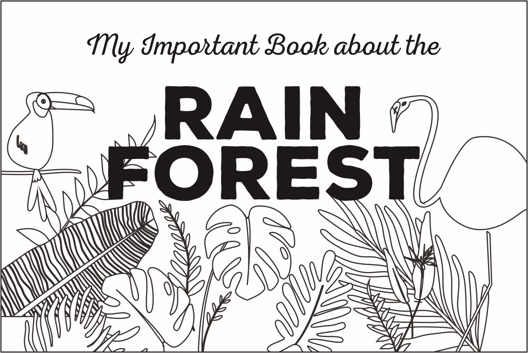 Printable Rainforest Activity Books