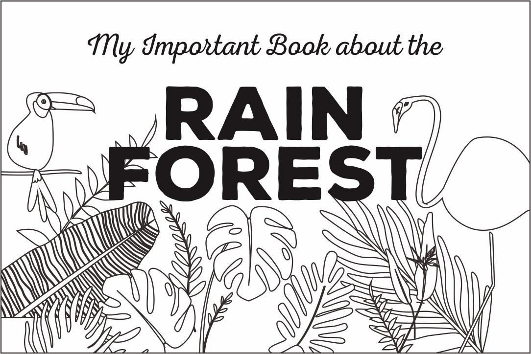 Printable Rainforest Activity Books