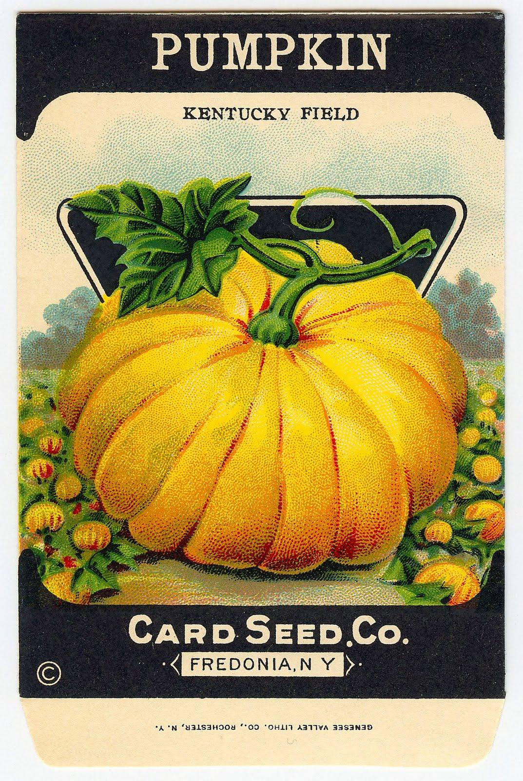6 Images of Vintage Pumpkin Printable Seed Packets
