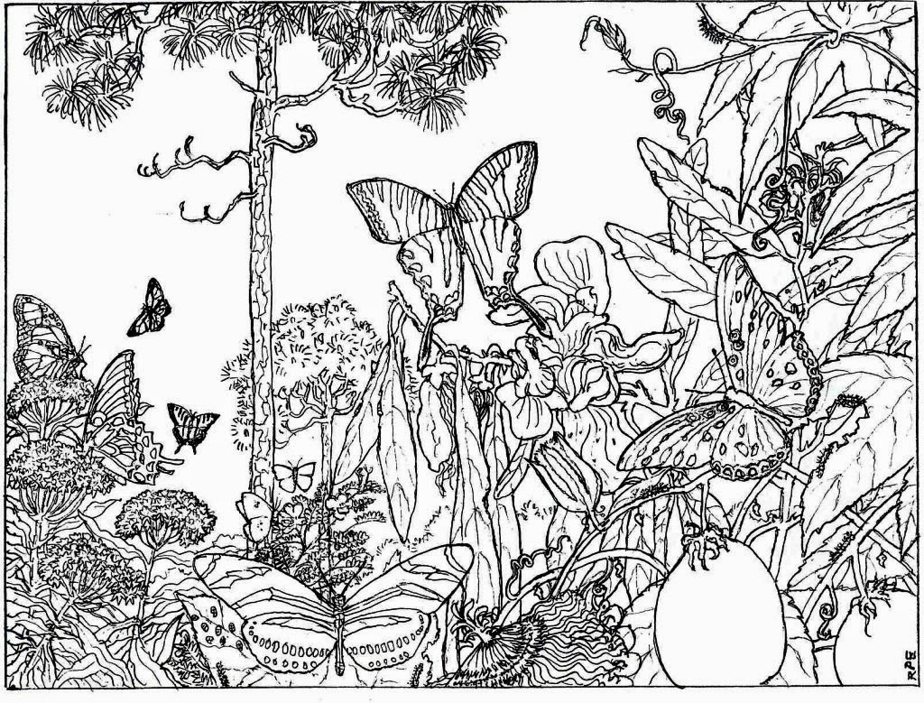 7 best images of nature printable coloring pages for for Free adult coloring pages