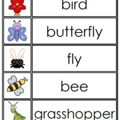Free Word Wall Printables