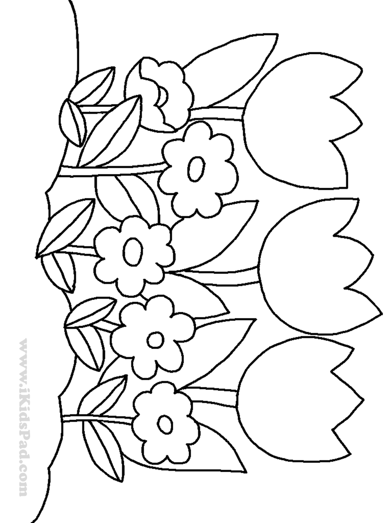 4 Images of Printable Color Book Flowers