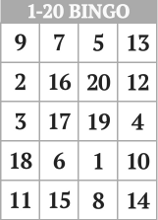 8 Images of 1-20 Number Bingo Printable