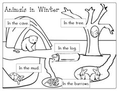 6 Images of Winter Animals Preschool Printables