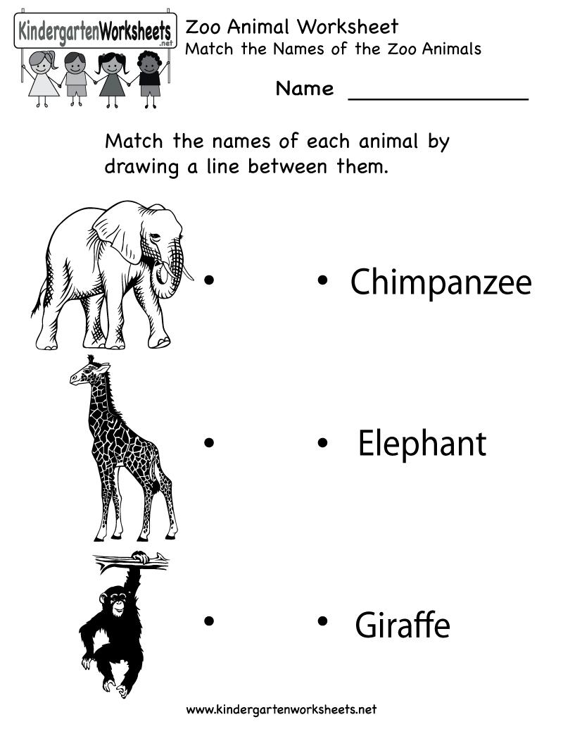 Preschool Animal Worksheet Print Outs : Best images of zoo worksheets preschool printables