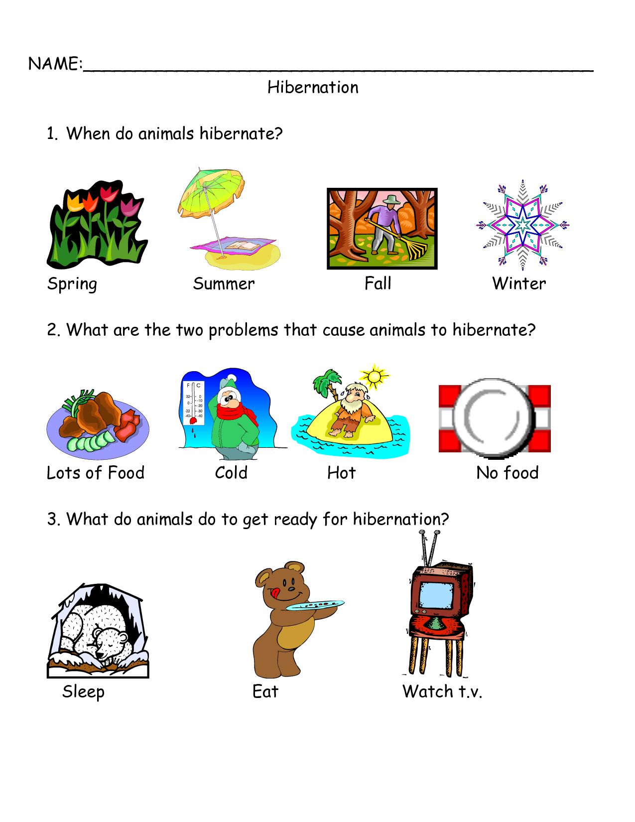 ... Animal Hibernation Worksheets, Animal Hibernation Printable Worksheets