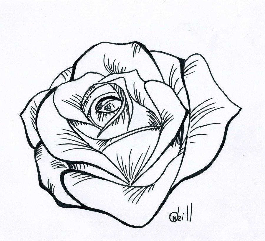 Rose Drawing Tattoo Stencil Designs