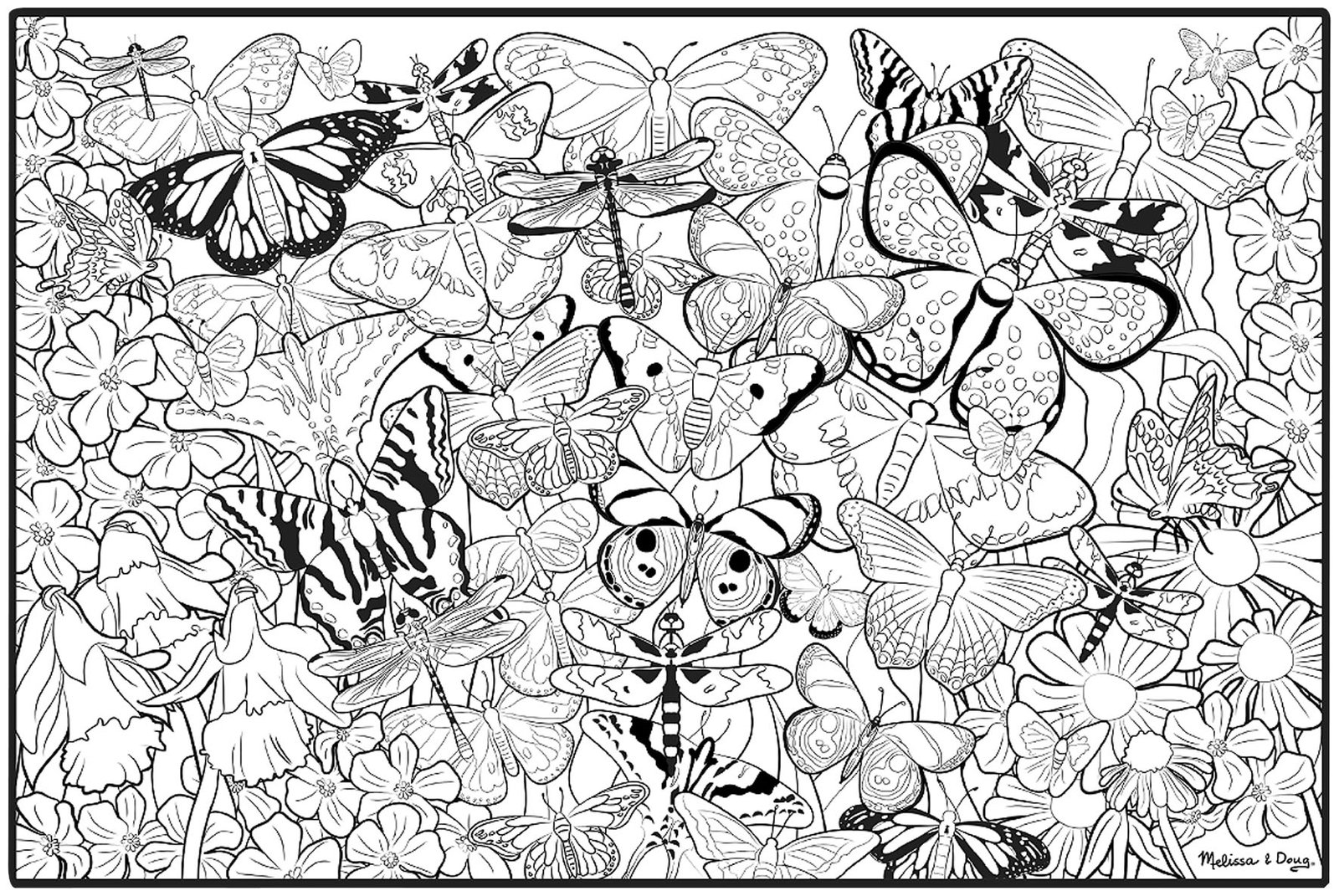 Colouring in free - Coloring Book For Adults Free Printable Free Printable Adult Coloring Pages Butterflies