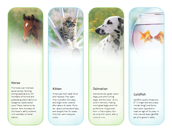 4 Images of Free Printable Horse Bookmarks