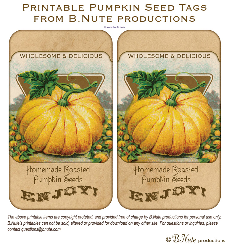 6 Images of Printable Pumpkin Labels